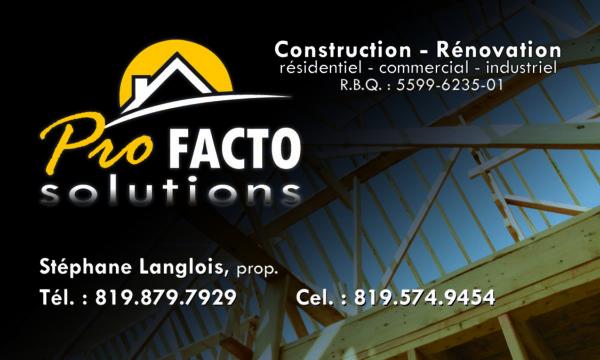 Pro Facto Solutions – Conception carte affaire