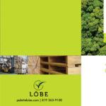Gestion LOBE – Conception brochure