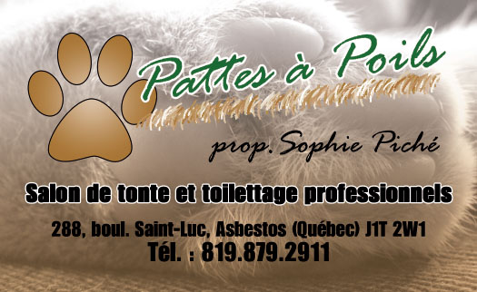 Pattes à Poils – Conception carte affaire